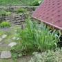 Ogród, Majowo-czerwcowy ogród Ewy -  Łubiny też są.