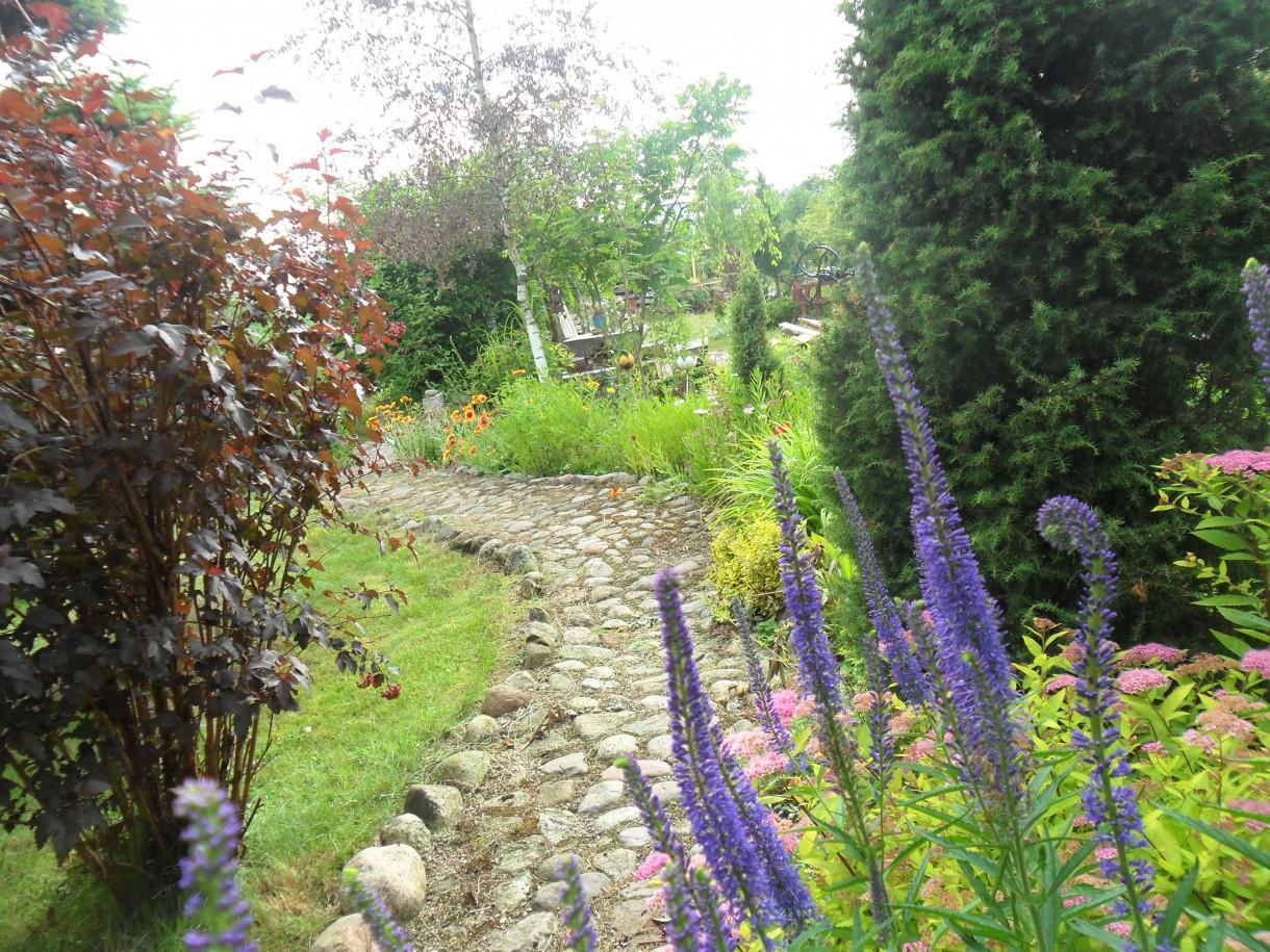 ogród z perspektywy...zapraszam:)