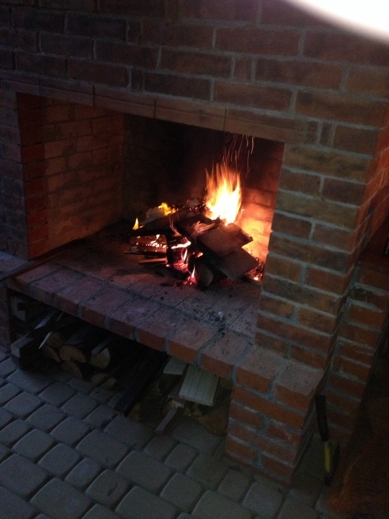 Ogród, Zimowe widoki - Płonie ogień próba generalna