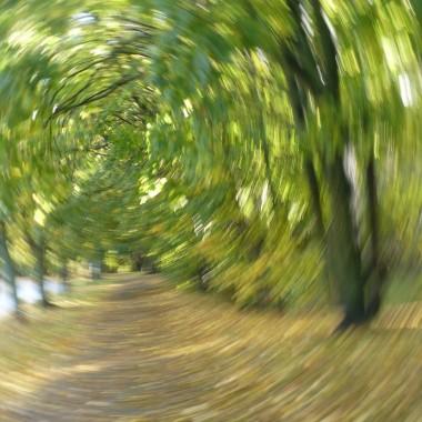 ................zakręcona jesień...............