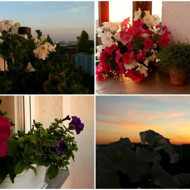 Balkonowe migawki w świetle zachodzącego słońca