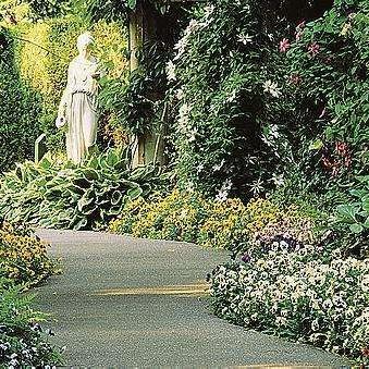 ogród leśny, stary, ścieżki, dekoracje