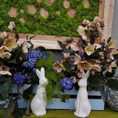 Wiosenne aranżacje do ogrodu