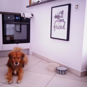 Babafu kocha zwierzaki :)