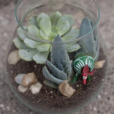 Jak zrobić kwiatowe terrarium?