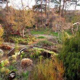 Wiosennie w ogródku