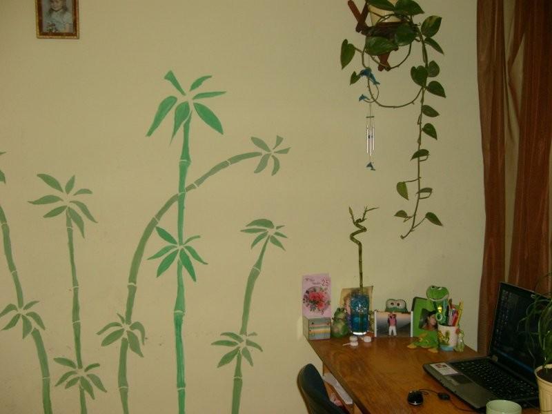 Rośliny, Zielone i kochane :) - Zielony azyl .... Moje ulubione miejsce w pokoju