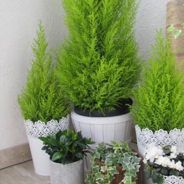 no i w końcu mamy wiosnę:) nadeszła wiec pora na galerię z jego udziałem:) Mój wymarzony biało -zielony balkonik:) zapraszam