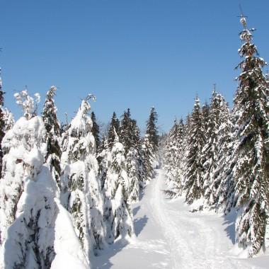 zaproszę Was jeszcze raz na zimowy spacer - tym razem szlakiem Szyndzielnia - Błatnia