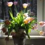 Pozostałe, Kwietniowe lato :) - :)