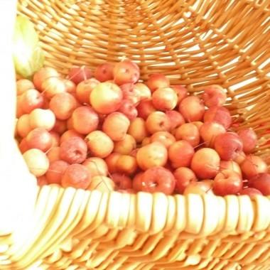 ...............i jabłuszka...............