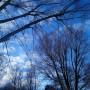 Dekoracje, Jajeczka.....serduszka....i...zazdroski....... - .............i zimowa fotka...............