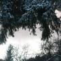 Pozostałe, Zima nad morzem .....i sztorm na Bałtyku..........