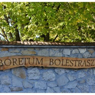 """Wizyta w Arboretum Bolestraszyce była właściwie zbyt krótka...Na wycieczki zawsze wybieramy się z Alfikiem,a do zabytkowych parków pieski nie mają wstępu.Stąd ten pośpiech. Przebiegłam więc przez teren w tempie pociągu pospiesznego. Ale i tak warto było.Kompleks arboretum ma wspaniałego gospodarza.Teren zadbany,pełen niespodzianek (rzeźby,wystawy art.,plener """"Wiklina art.) Mapka tego urokliwego  miejsca wydana w ciekawej ,składanej oprawie (""""piekło i niebo""""), Przy wejściu można kupić najnowszych Leksykon  Podkarpackich Ciekawostek Krajoznawczych. Kwiaty,krzewy drzewa już w jesiennej odsłonie.Trzeba powrócić  wiosną.Koniecznie."""