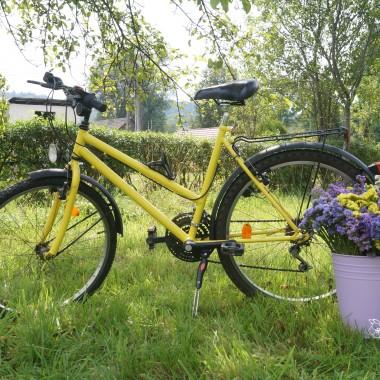 To jest moj rower ktory moj mąż pomałowal w jaskrawy żółty kolor. A błotniki w czarny matowy kolor, jaki jest teraz bardzo modny dla samochodow. Ja bardzo lubie nim jezdzic na spacer :) I dużo zatrwianu :)