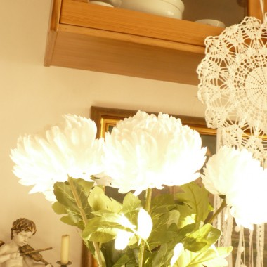 .................i białe chryzantemy..............