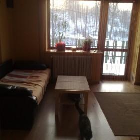 pokój dzienno-sypialniany