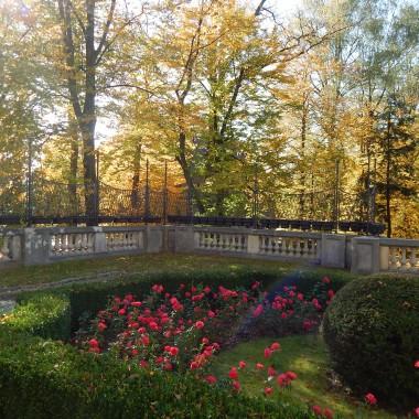 Zapraszam na spacer śladami Księżnej Daisy von Pless.Plessowie byli właścicielami kopalń,hut,cegielni,cementowni,majątków rolnych,młynów,wielkich obszarów leśnych,domów handlowych,hoteli uzdrowiskowych,dworków myśliwskich oraz zamków w Pszczynie i Książu.Zapraszam do pięknego parku i zamku w Pszczynie :)