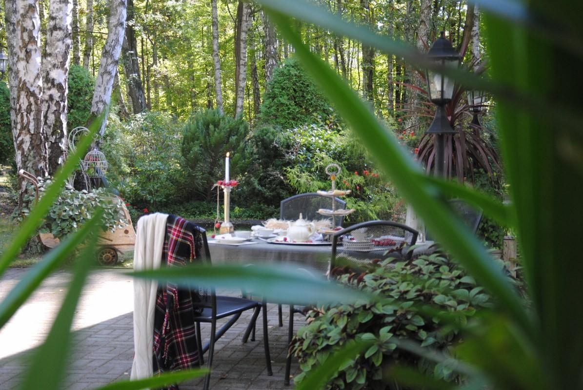 Ogród, Ostatni dzień lata z kroplą czerwieni :)