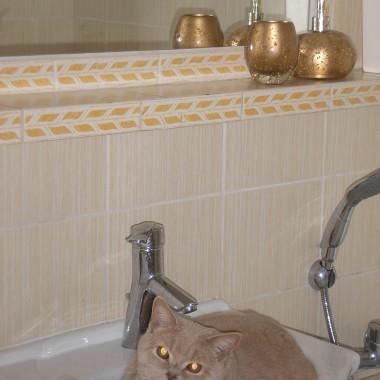mała łazieneczka....