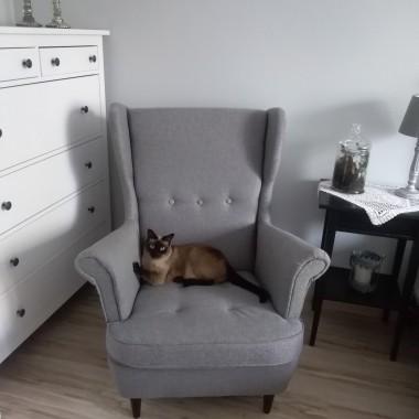 nowy nabytek kot najbardziej zadowolony :)))