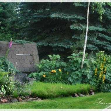 Ogród przy starej sudni