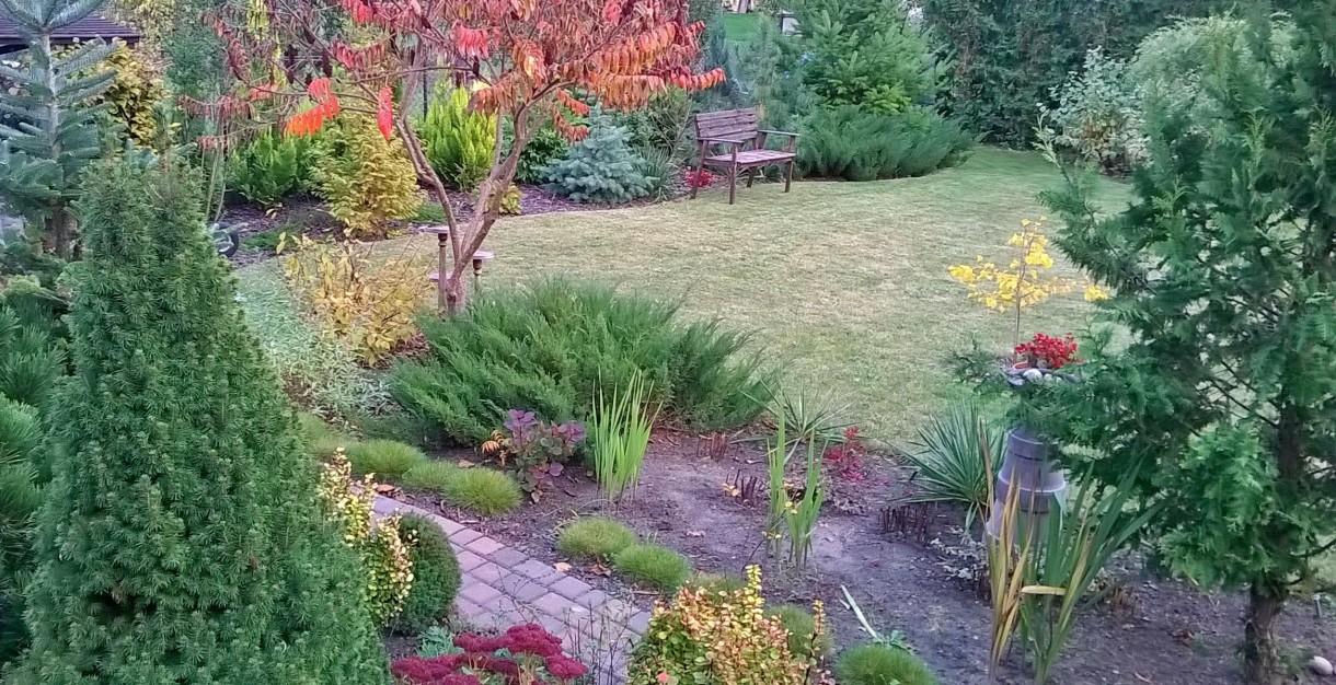 Ogród, jesiennie