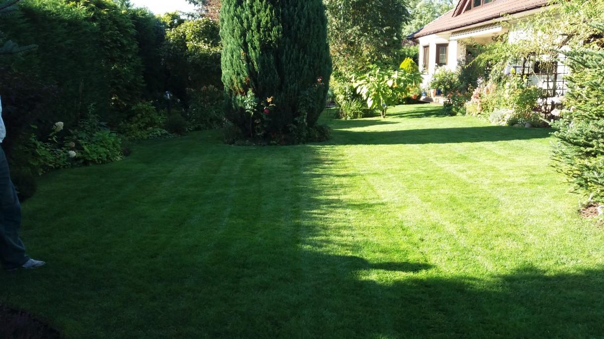 Pozostałe, Jesień:) - Trawnik skoszony, godzina 15 i dłuuugie jesienne cienie....