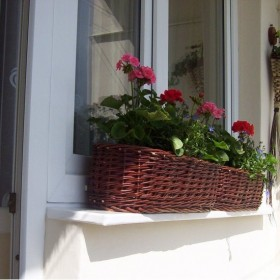 Mój balkonowy ogródek