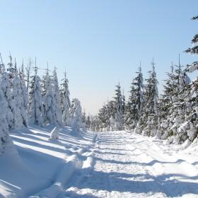 zimowa ...
