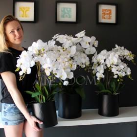 Zestawy kwiatowe - łatwym rozwiązaniem