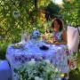 Pozostałe, kolacja pod różą.