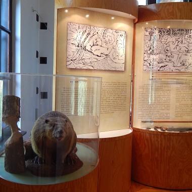 Las i historia...czyli fotograficzny skrót z pobytu w Muzeum Leśnictwa w Gołuchowie.Na terenie parku krajobrazowego znajduje się także pokazowa zagroda zwierząt.
