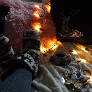 Jedni wychodzą na zimowe spacery, inni idą się bawić, a później wszyscy odpoczywają:)))