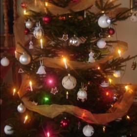 Choinkowo świątecznie