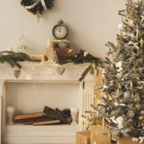 Pielęgnacja żywego drzewka świątecznego
