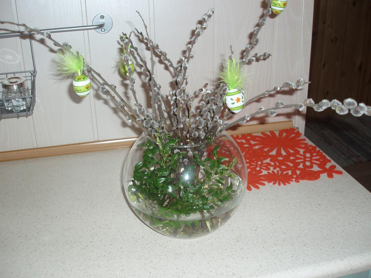 Rośliny, wiosna, kwiaty