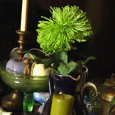 galeria jednego kwiatu