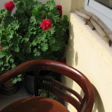 Mój balkon,  tradycyjnie już - pelargonie, ławeczka wykonana z kawałków wyrzuconych mebli ... a czasami materac do leniuchowania z chłopakami.