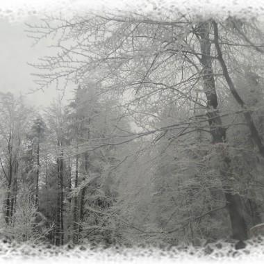 natchniona zimą..:-)