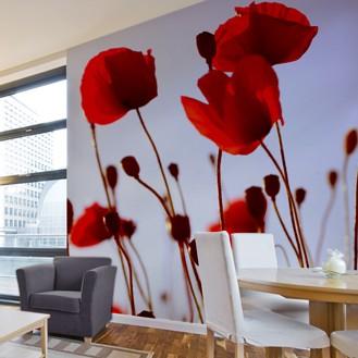 Są jak dywany na ścianę rozpieszczają oko i rozweselają pomieszczenie,czasem dodając mu głębi,koloru,a niektóre są zabawne miłego oglądania&#x3B;)