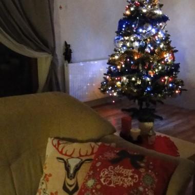 Pierwsze Święta w nowym domku :)