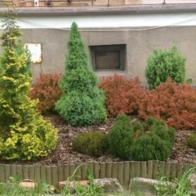 ogródek pod balkonem - w bloku...