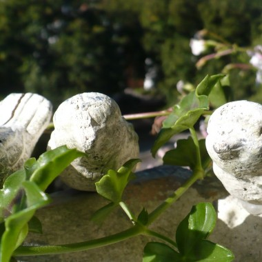 ..................i moje kamienne ptaszki na balkonie.............