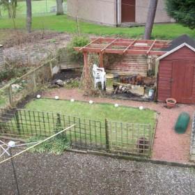 Mój ogródek, my garden