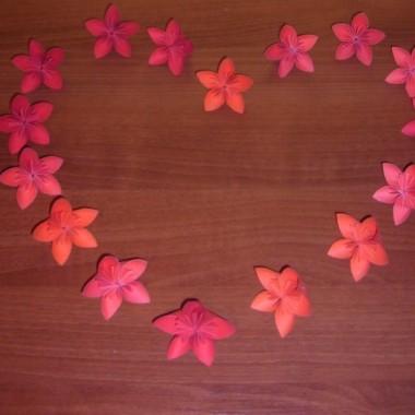 kolorowe kwiatki:)