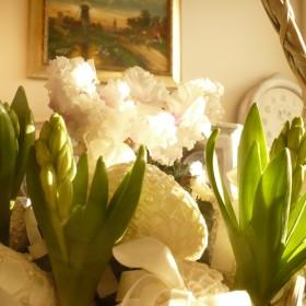 Moje przywoływanie wiosny...............