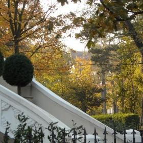 Jesienna galeria dla Basiarka...............