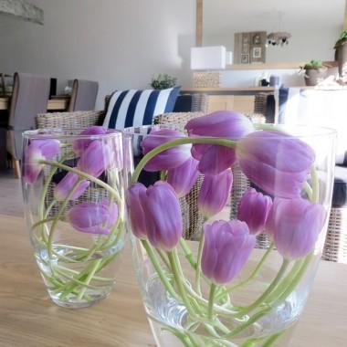 Moja kompozycja minutowka,warunek:tulipany musza byc takie 2 dniowki z wazonu,wtedy lodyzki maja bardzo gietkie.