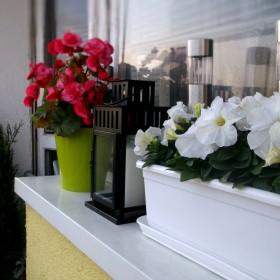 Balkon - mój prywatny kawałek raju :)